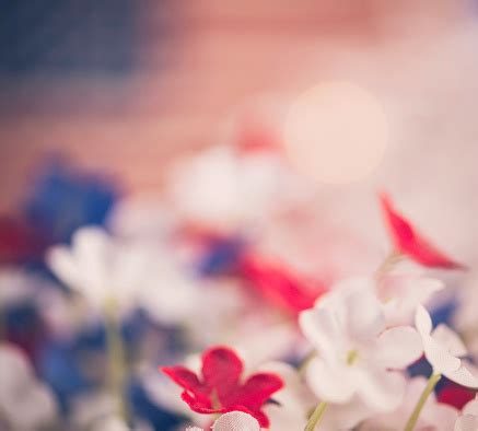 July 4th Background Patriotic Flowers With American Flag