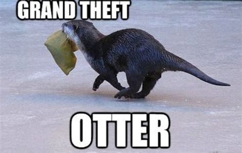 Funniest Puns In The History Of The Internet (GALLERY)