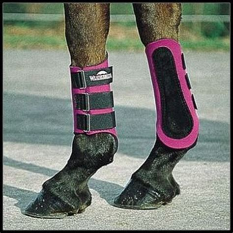 The Perfect Horse: Leg Protection