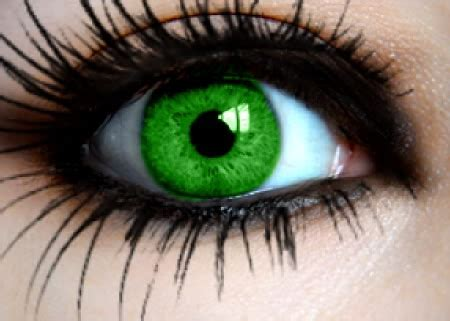 Green Contacts for Brown Eyes   Style Wile