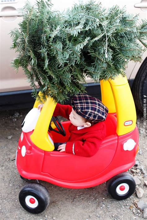 Just picking up the Christmas tree