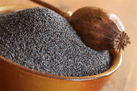 Poppy Seeds Benefits: Nutritional Facts And More | How To Cure